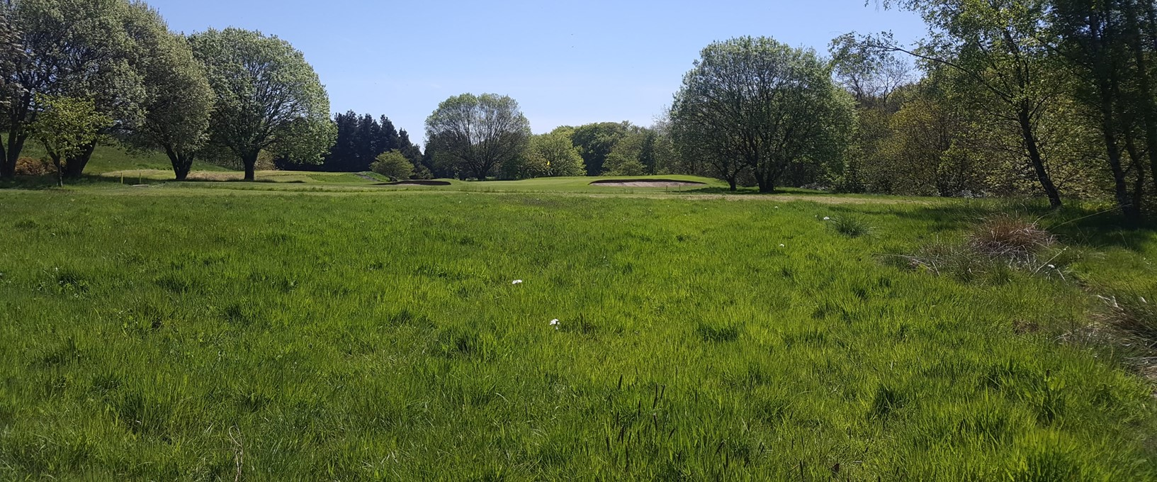 Looking out from the tee, on the 5th hole at West Bradford