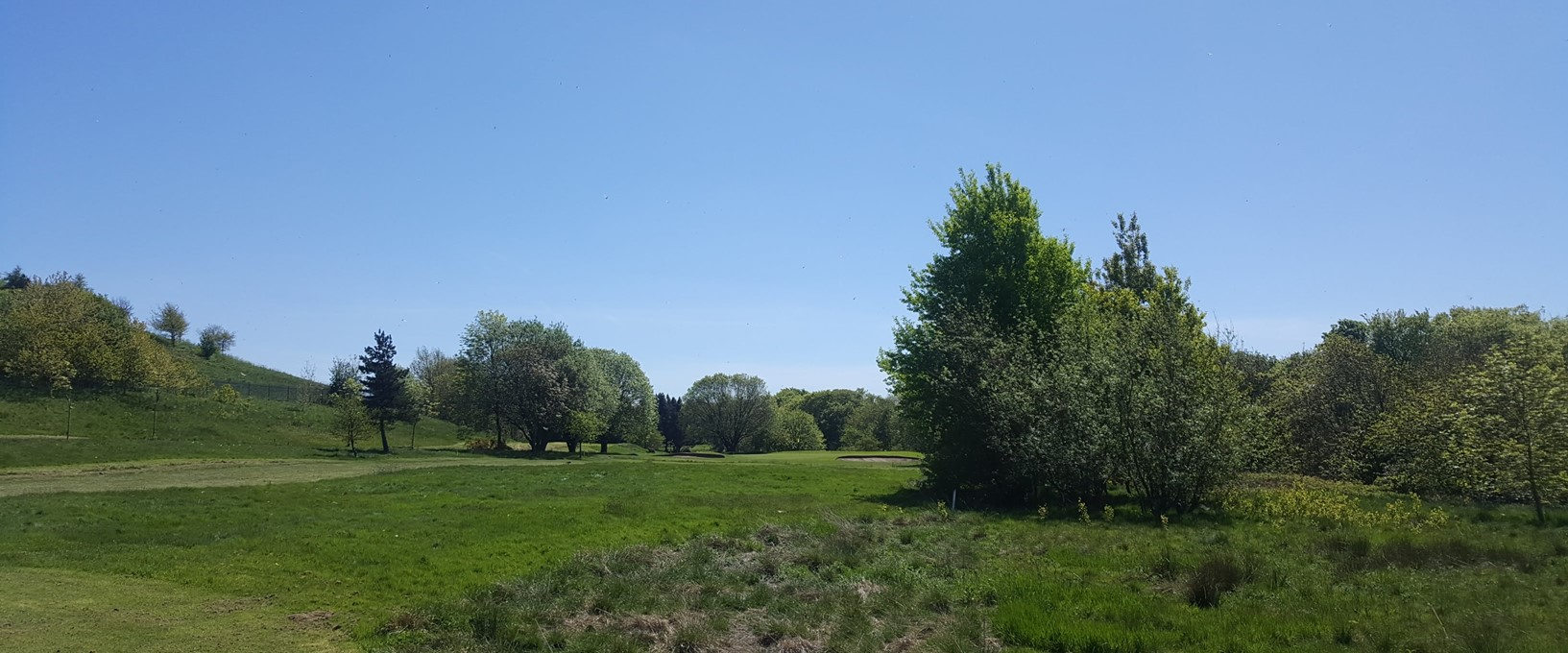 A view of the green from the rough, at hole 5 West Bradford