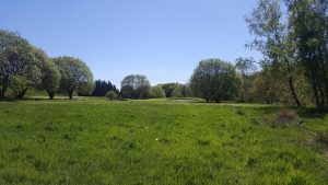 Looking from the rough to the green on the 5th hole at West Bradford